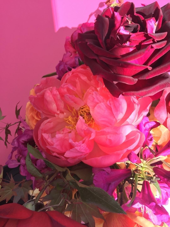 lynda (@lyndahorton) Cover Image