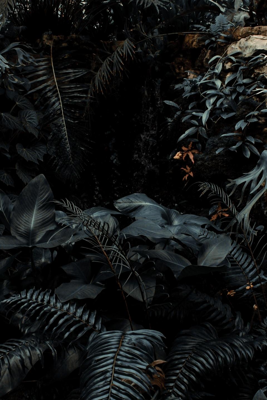 Eduardo Carballo ✶ (@eddesignme) Cover Image