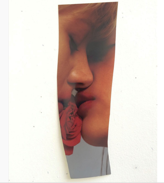 (@dominionin) Cover Image