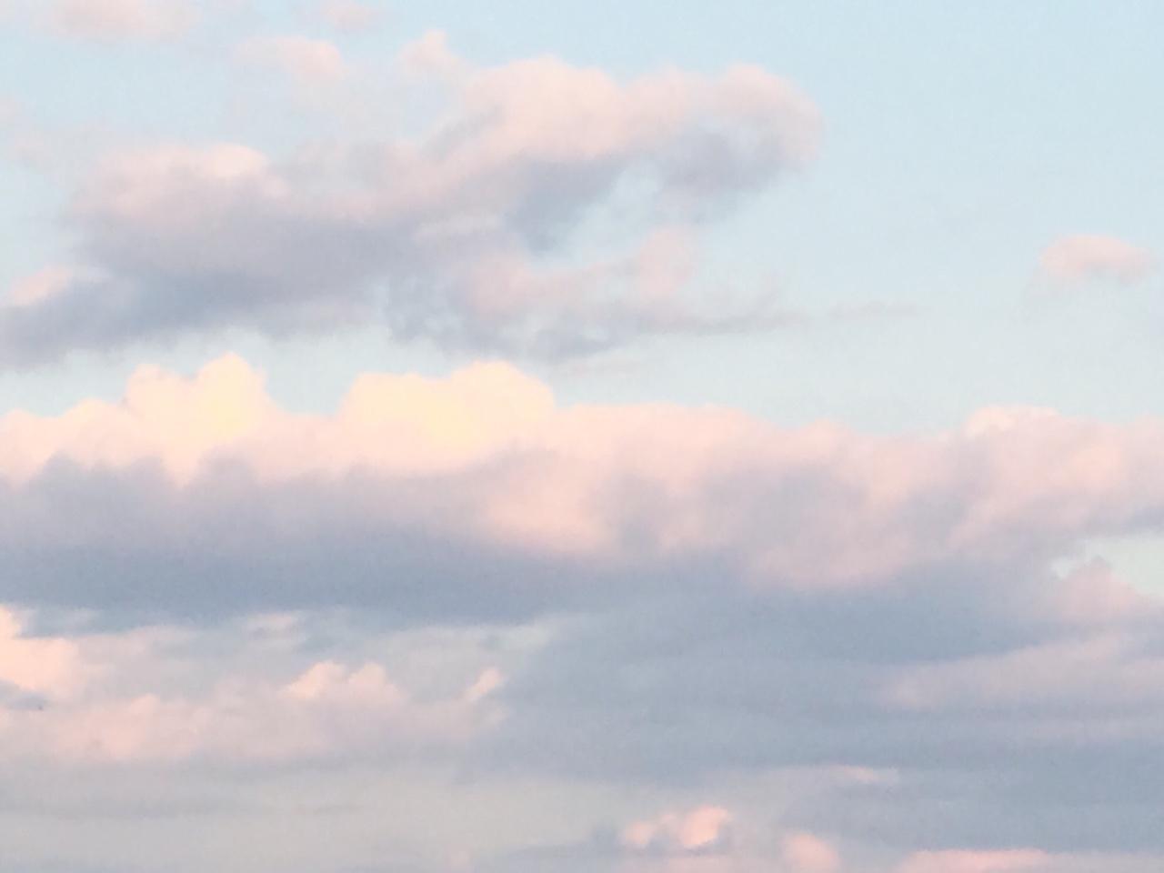 calm down ciel (@3-54am) Cover Image