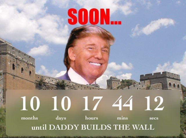 Donald Trump (@therealdonaldtrump) Cover Image