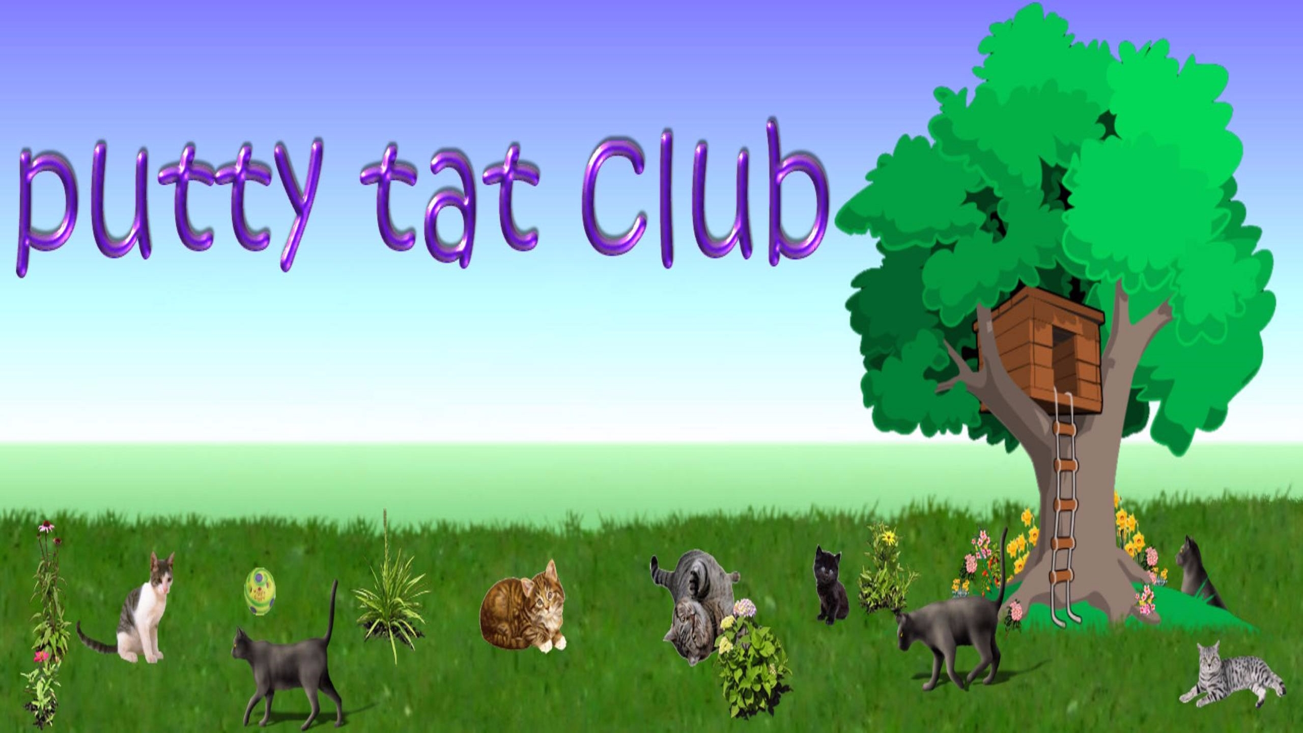 (@puttytatclub) Cover Image