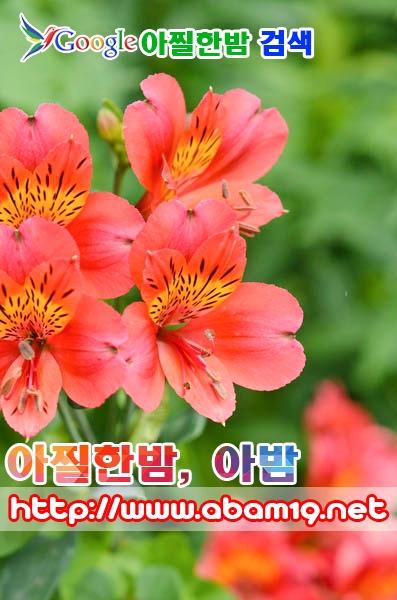 김해오피 (@gimhaeop) Cover Image