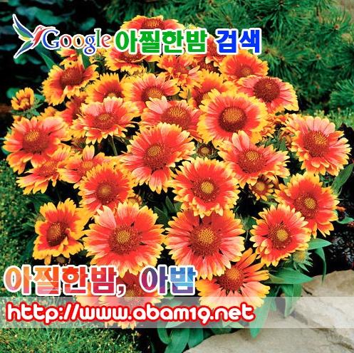 동래오피 (@dongnaeop) Cover Image