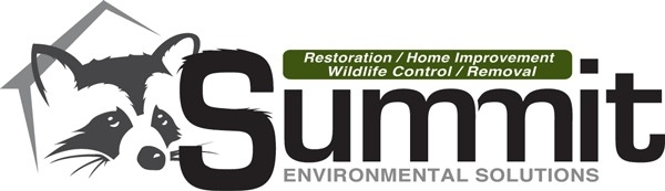 Summit Environmental Solutions (@summites) Cover Image