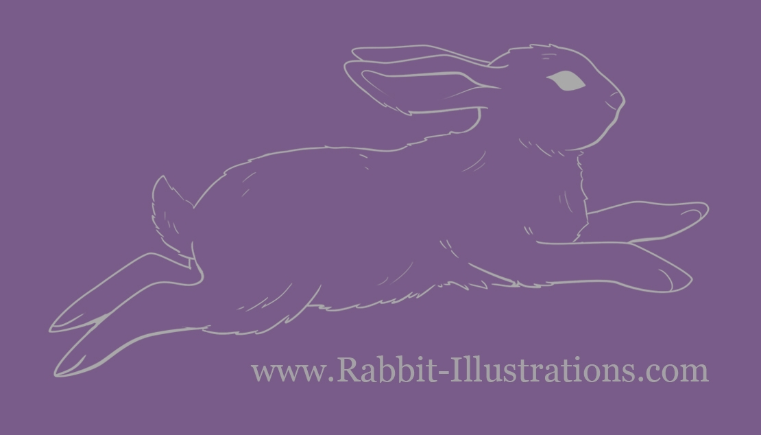 Connor (@rabbit-illustrations) Cover Image