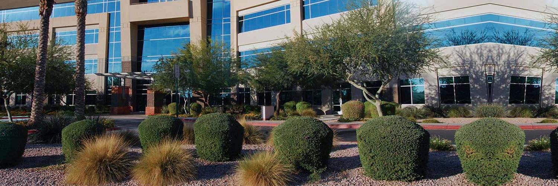 Phoenix Landscaping Service (@lawncare) Cover Image
