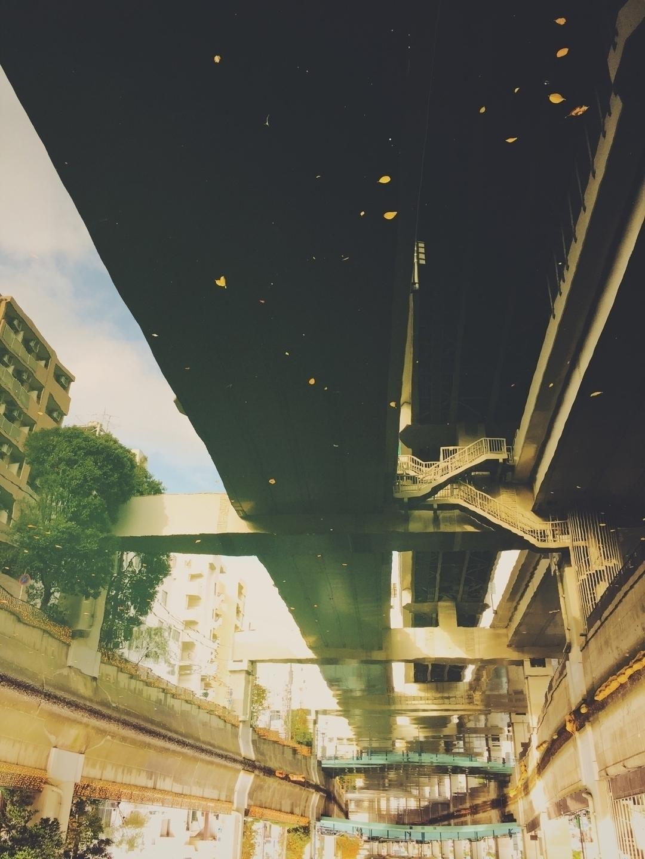 Asaki Koshikawa (@koshikawa) Cover Image