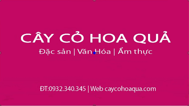 Hoa hoe (@hoahoe) Cover Image