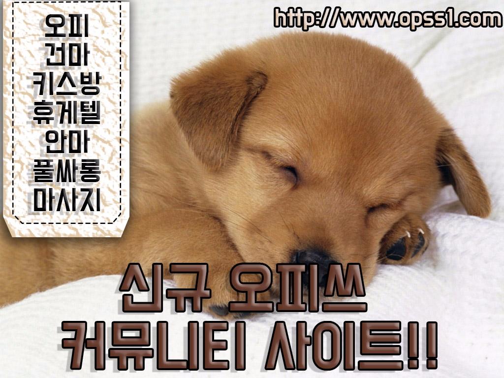 광교오피[오피쓰] (@gwanggyoopss) Cover Image