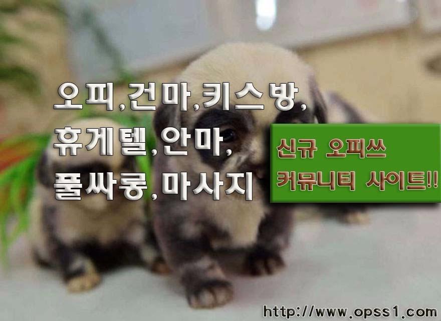 「의정부오피」「오피쓰」 (@uijeongbuopss) Cover Image