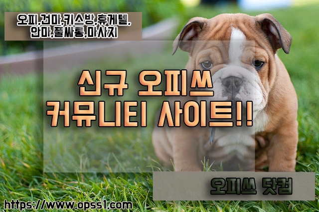 서산오피[오피쓰] (@seosanopss) Cover Image