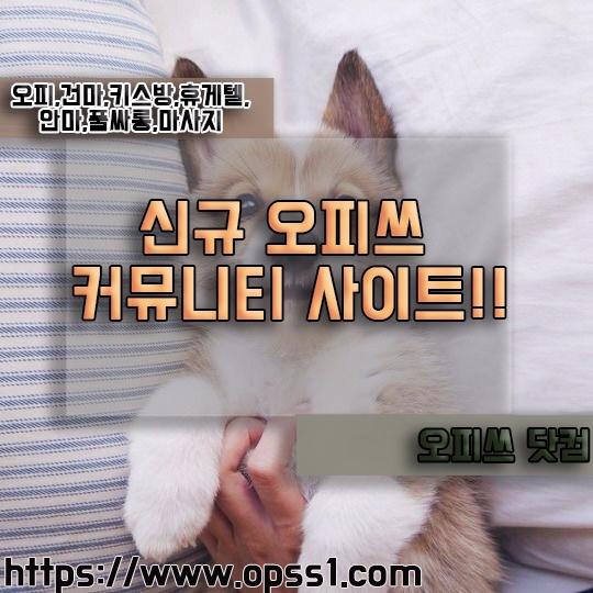 {세종오피}오피쓰 (@sejongopss) Cover Image