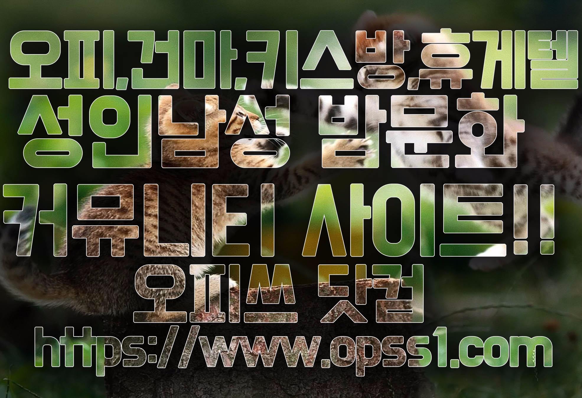{김해오피}오피쓰 (@gimhaeopss) Cover Image