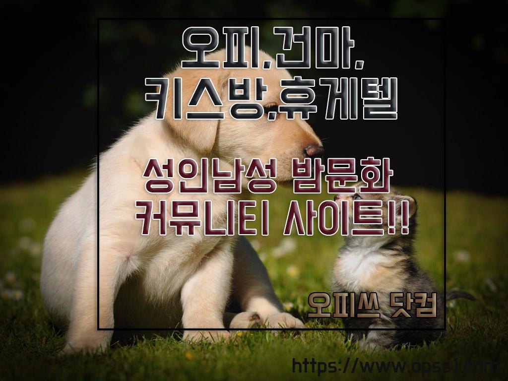 「울산오피」오피쓰 (@ulsanopssative) Cover Image