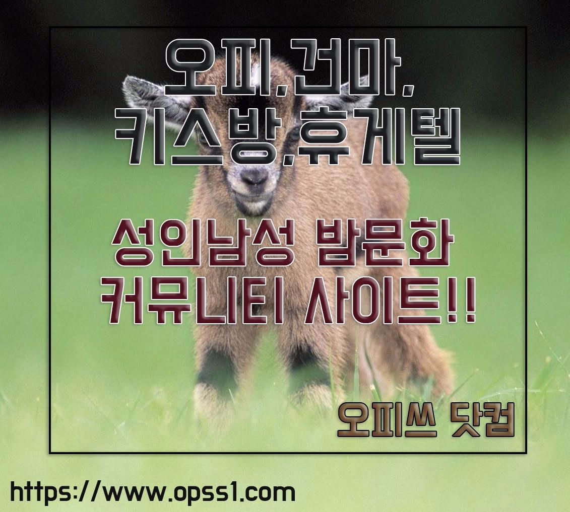 {전주오피}{오피쓰} (@jeonjuopss) Cover Image