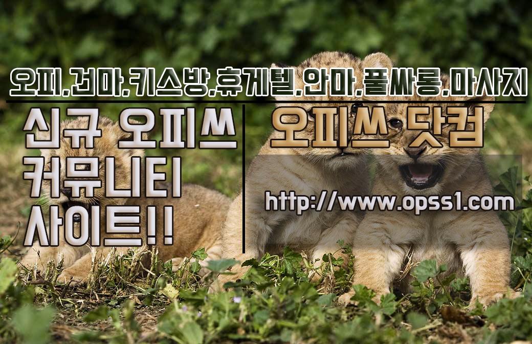 홍대오피 오피쓰 (@hongdaeopss) Cover Image