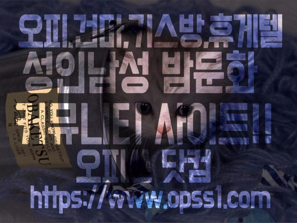 마포건마 오피쓰 (@mapogunma) Cover Image