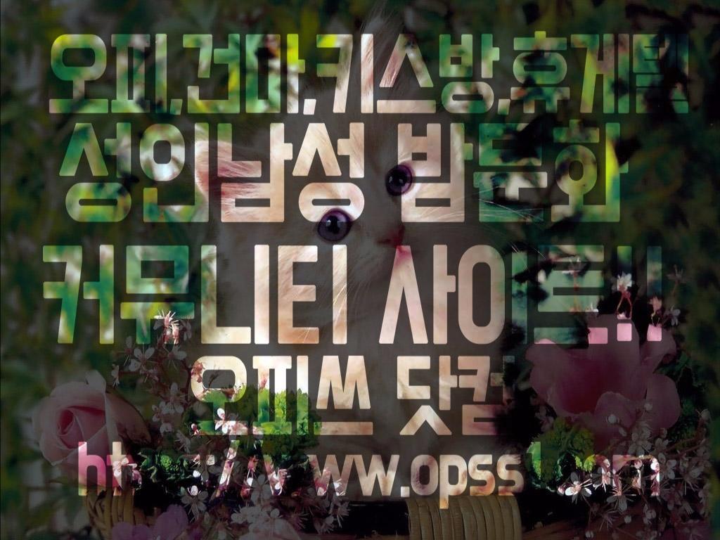 「서대문건마」오피쓰 (@seodaemungunma) Cover Image