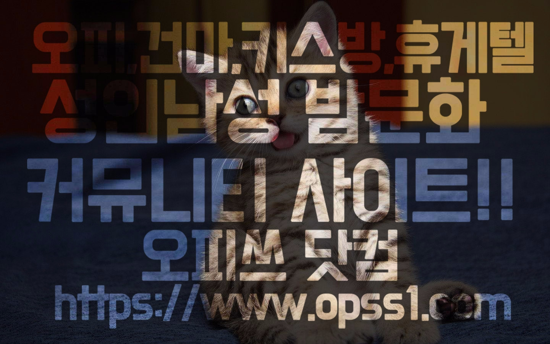 서울대건마 오피쓰 (@seouldaegunma) Cover Image