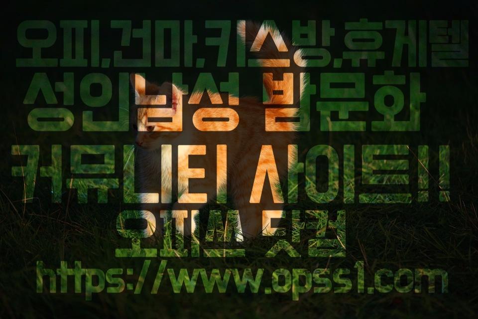 의정부건마[오피쓰] (@uijeongbugunma) Cover Image