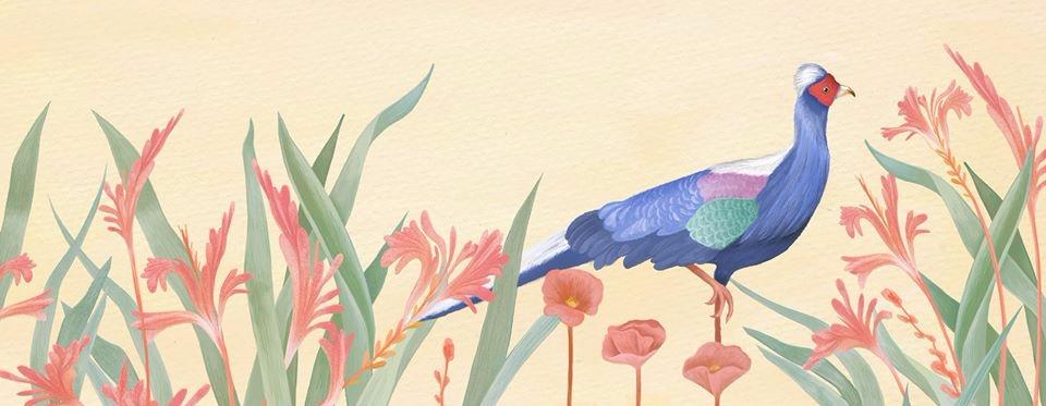 Meiko Kang (@meikokang) Cover Image