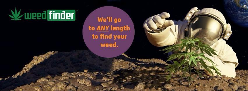 Weed Finder (@gabbyrocket) Cover Image