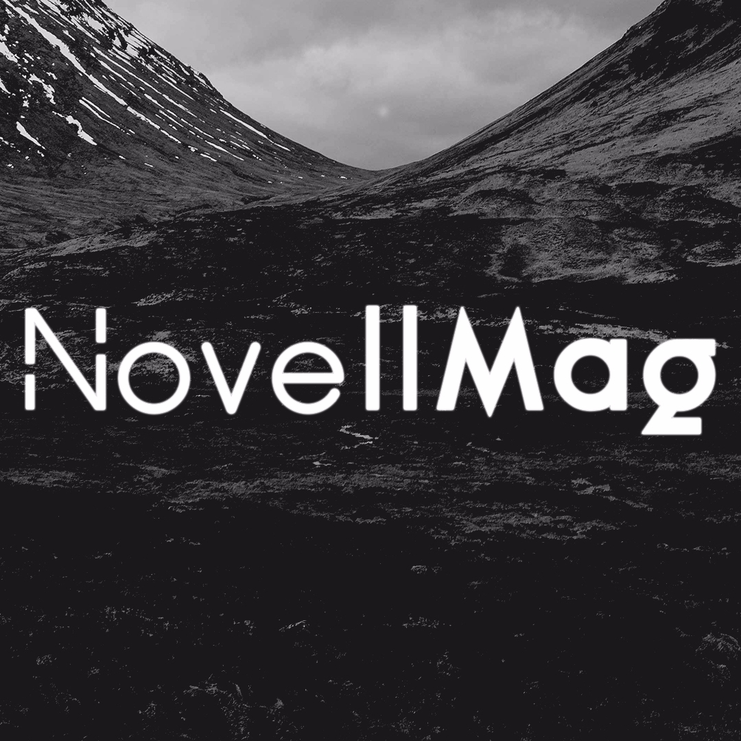 N (@novellmag) Cover Image