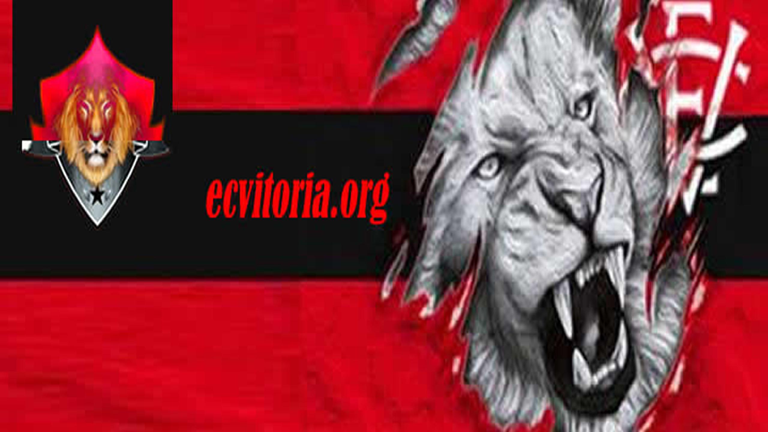 ECVitoria (@laramaziul) Cover Image