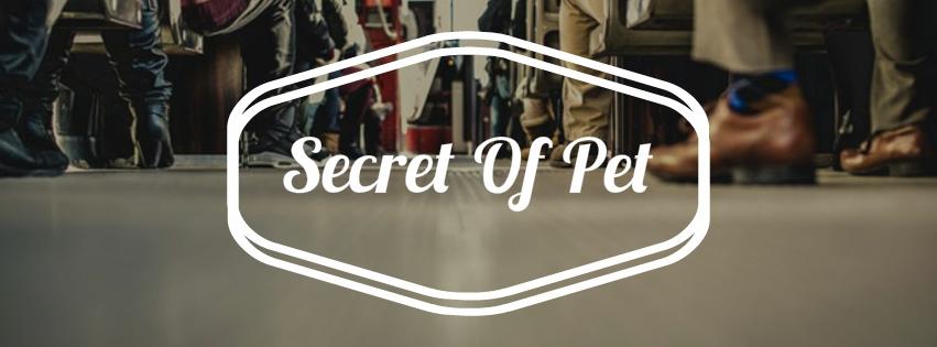Secret Of Pet (@secretofpet) Cover Image