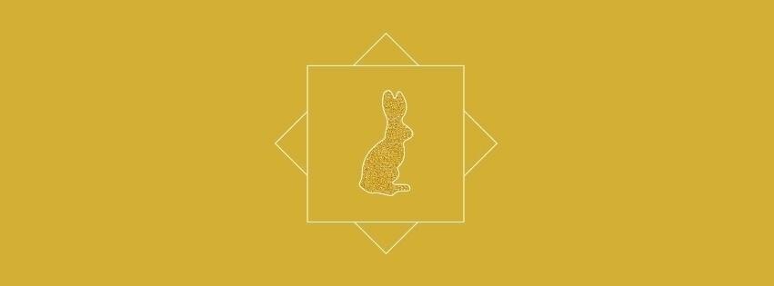 Golden Rabbit (@goldenrabbitnz) Cover Image