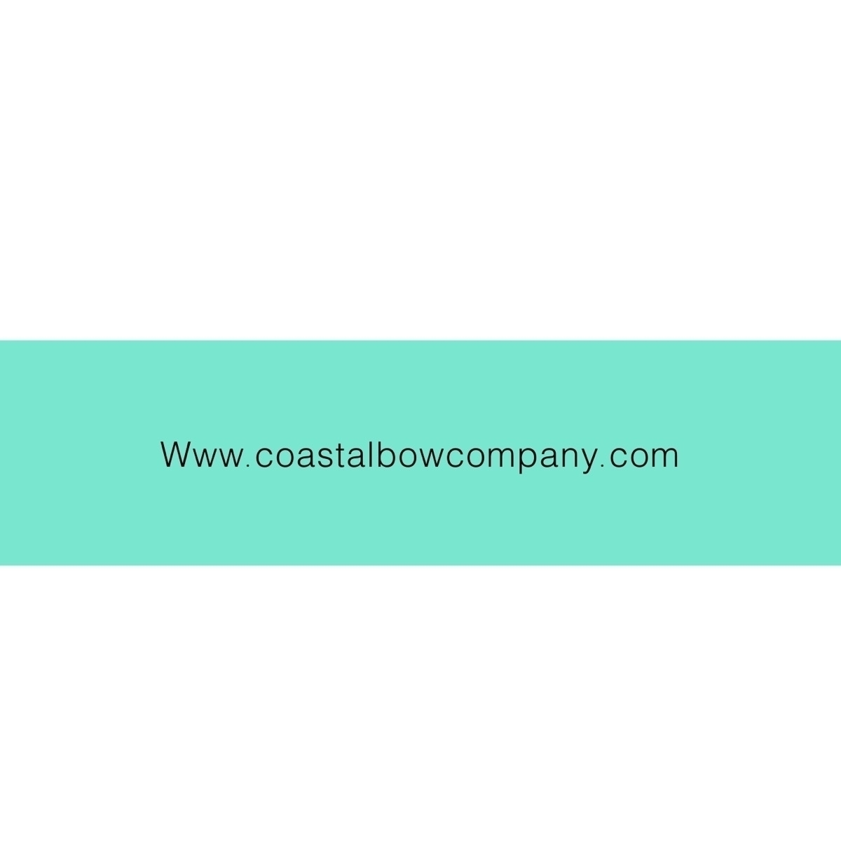 @coastalbowco Cover Image