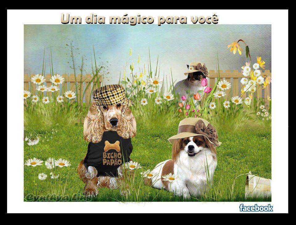 LOLA PANTU (@lolapantufa) Cover Image