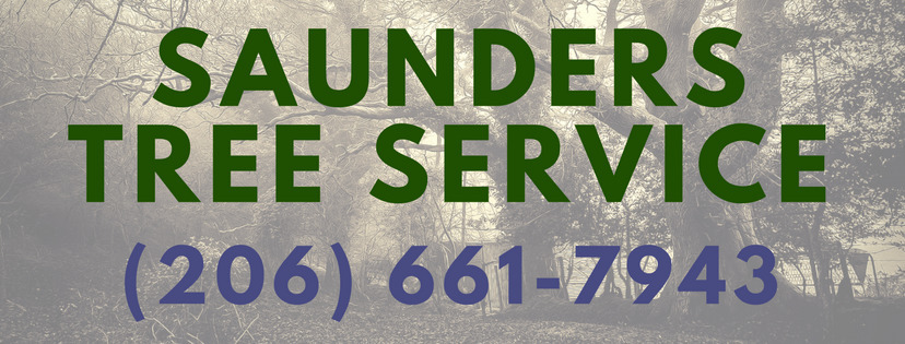 Stewart Saunders (@bothelltreeservice) Cover Image