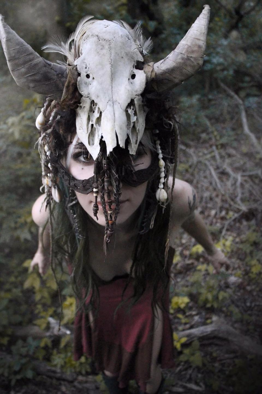 Lydia Whitesides (@dragonbunnystudiosart) Cover Image