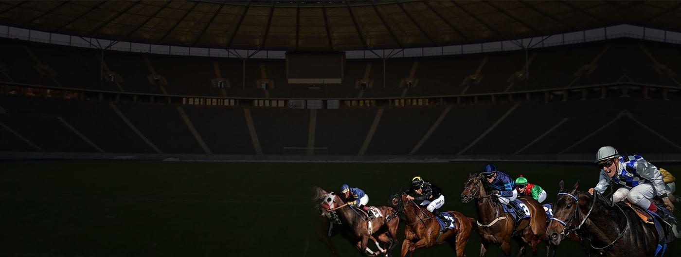 Monaco StallionsCasino (@monacostallions) Cover Image