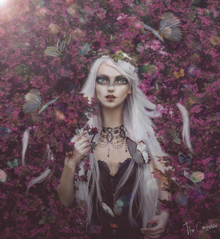 The Comtesse | E n i g m a e  (@cappryleiva) Cover Image