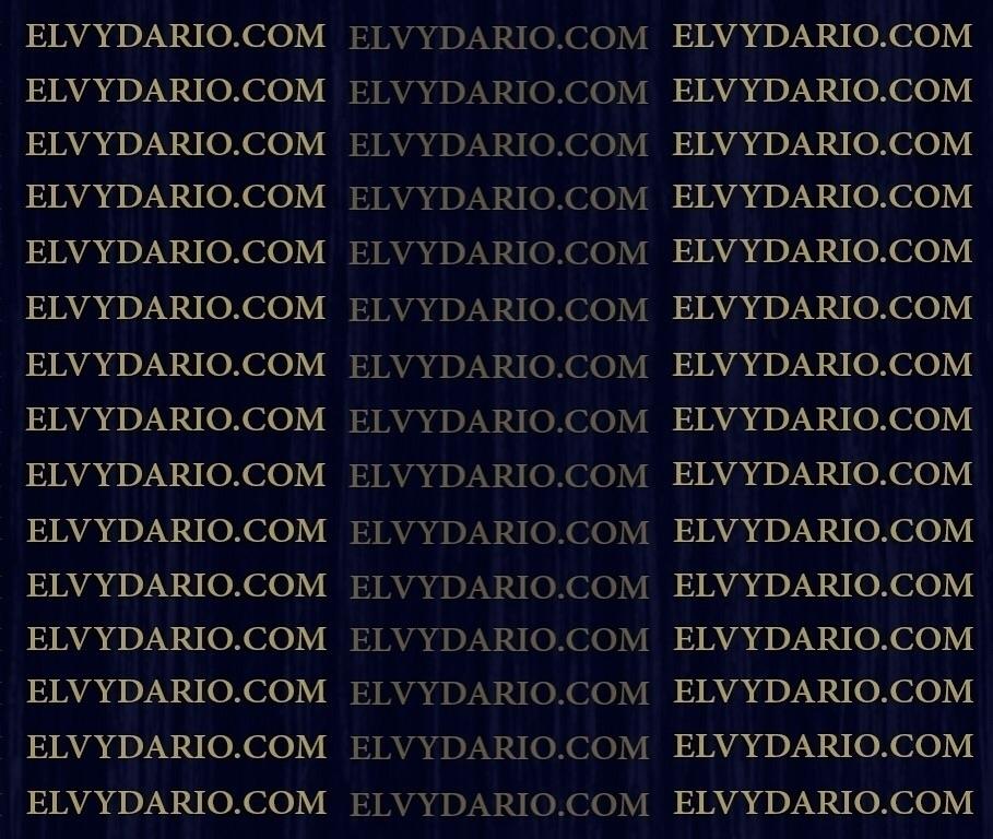 ELVYDARIO (@elvydario) Cover Image