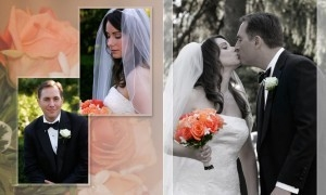 Professional Wedding Photography & Videography (@professionalwedding9) Cover Image
