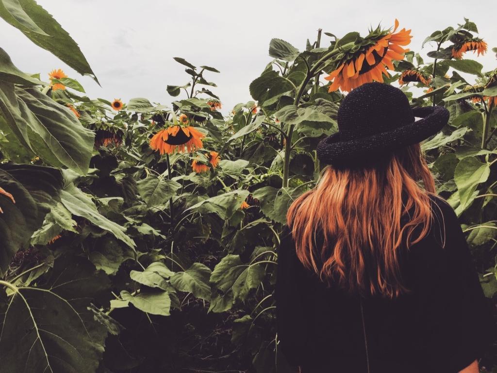 Lizi-Elisabeth Chikhradze (@lizi-elisabeth) Cover Image