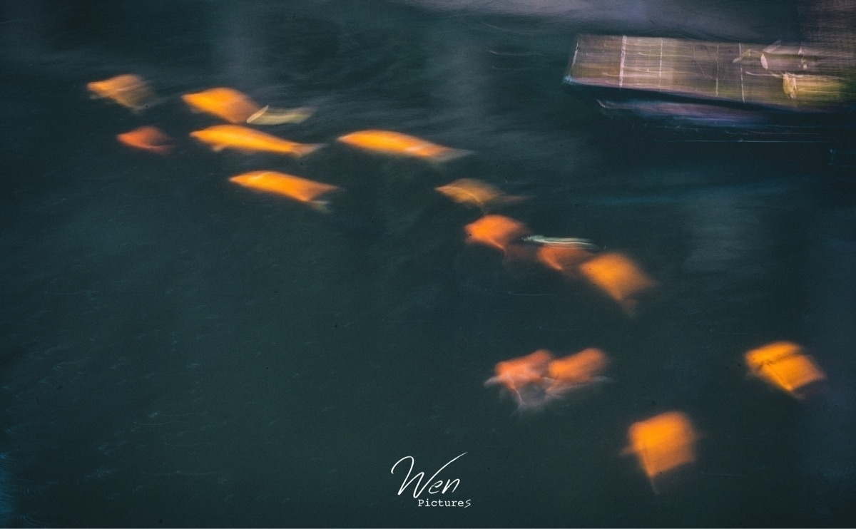 Wen (@txwen) Cover Image