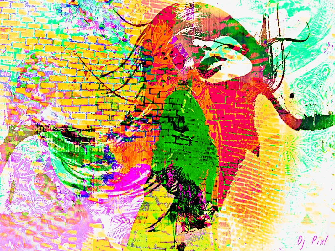cressy  (@djpixl56) Cover Image