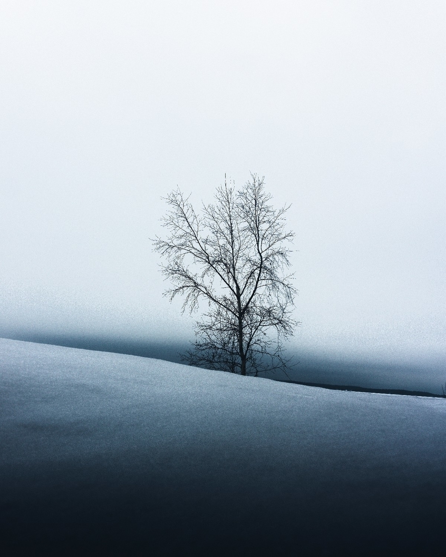 Juuso Salminen (@salminenjuuso) Cover Image