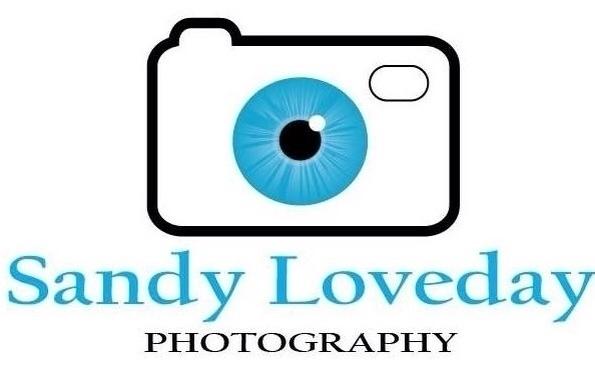Sandy  (@sandyloveday) Cover Image