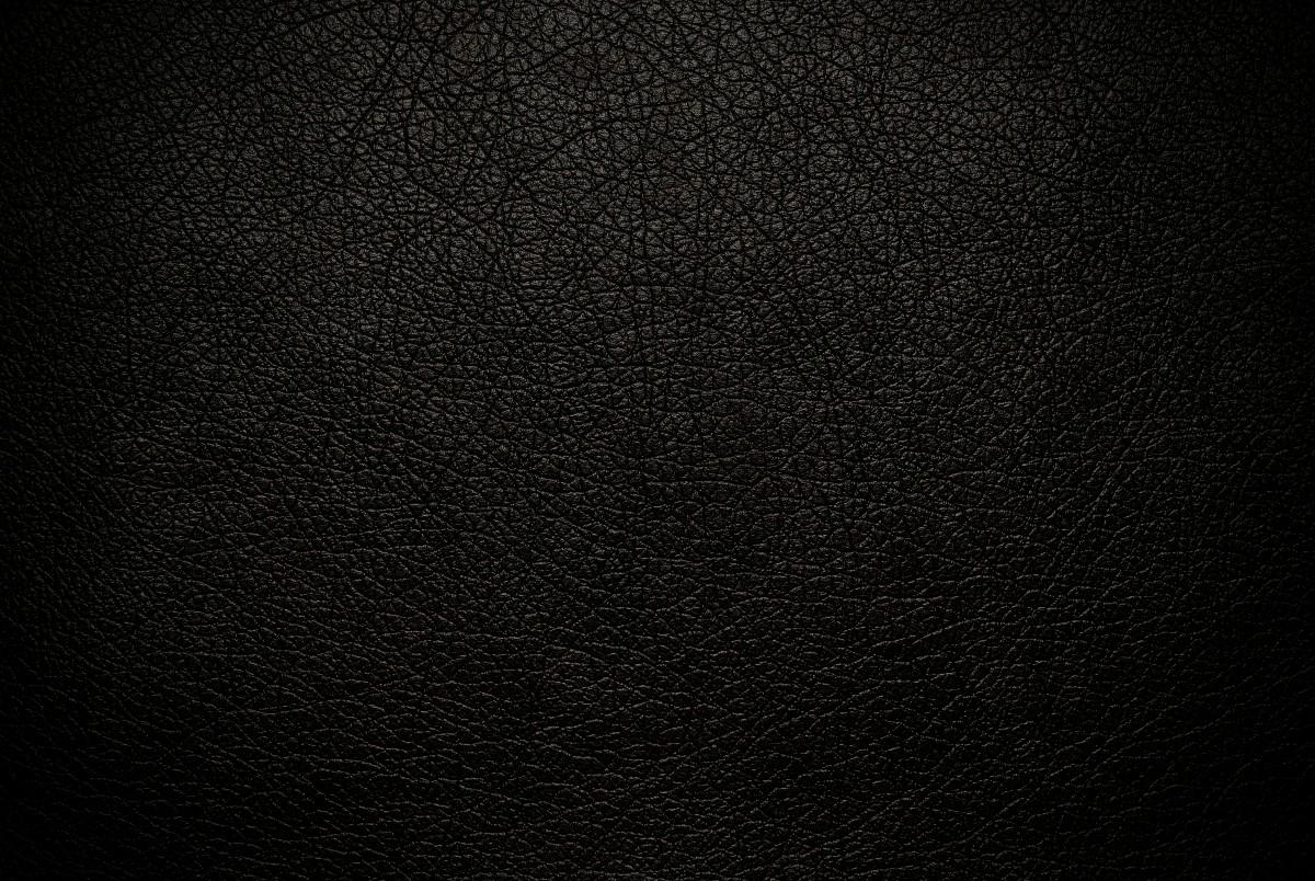 Rjenvikal (@rjenvikal) Cover Image
