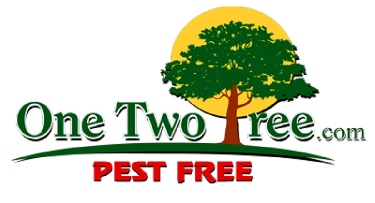 One Two Tree Inc. (@onetwotree0) Cover Image