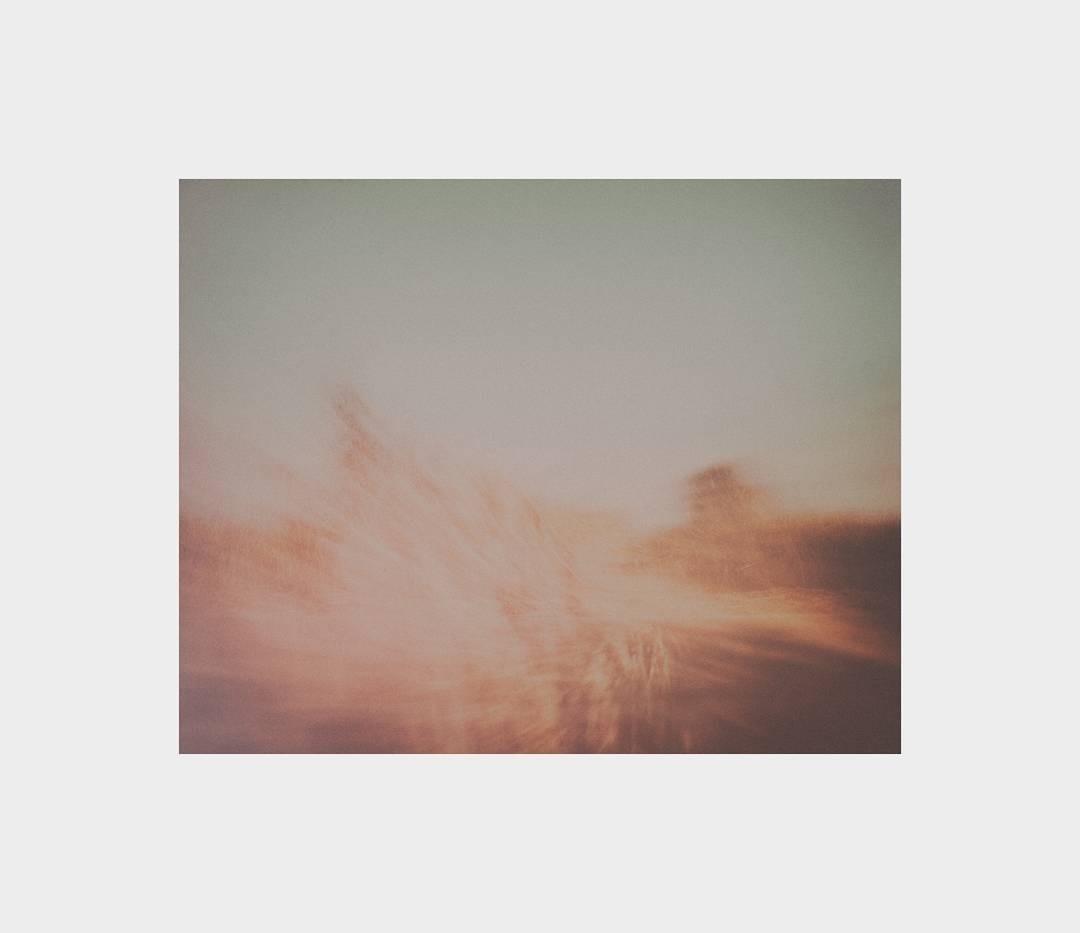 elena  (@elenallorens) Cover Image
