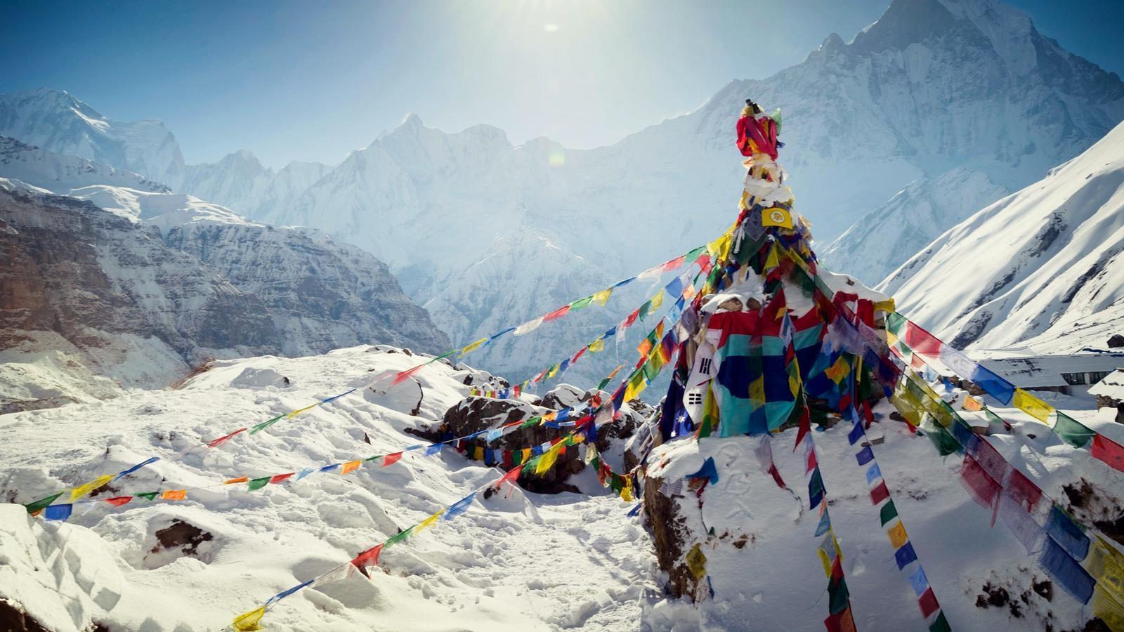 Shera Sherpa Adventures (@sherasherpaadventures) Cover Image
