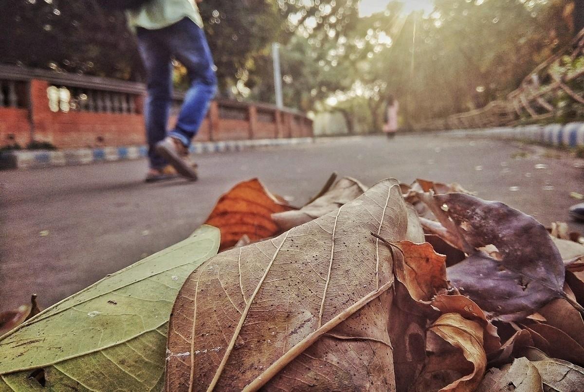 Rounak Das (@rounak_rk) Cover Image