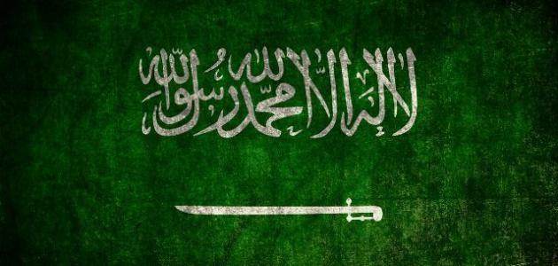 شركة نقل اثاث من الرياض الي الامارات (@sarasameer) Cover Image